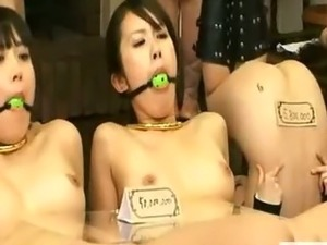 asian nudist sex