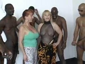 bbw interracial galleries