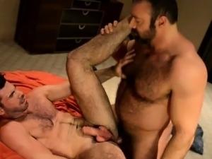 Masturbating bear video